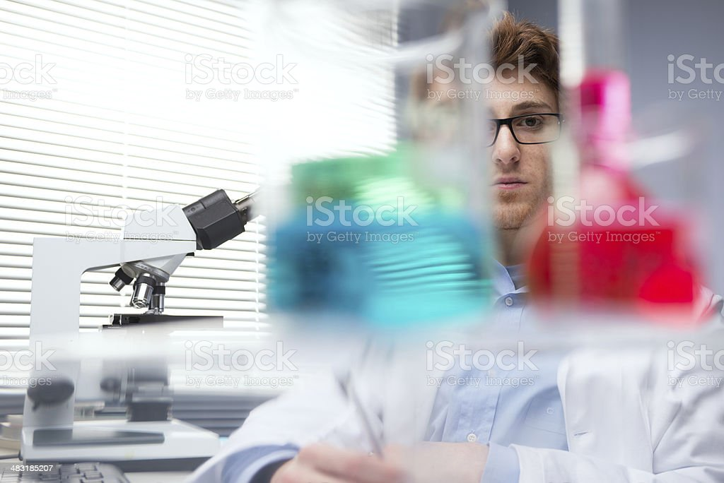 Researcher at work royalty-free stock photo