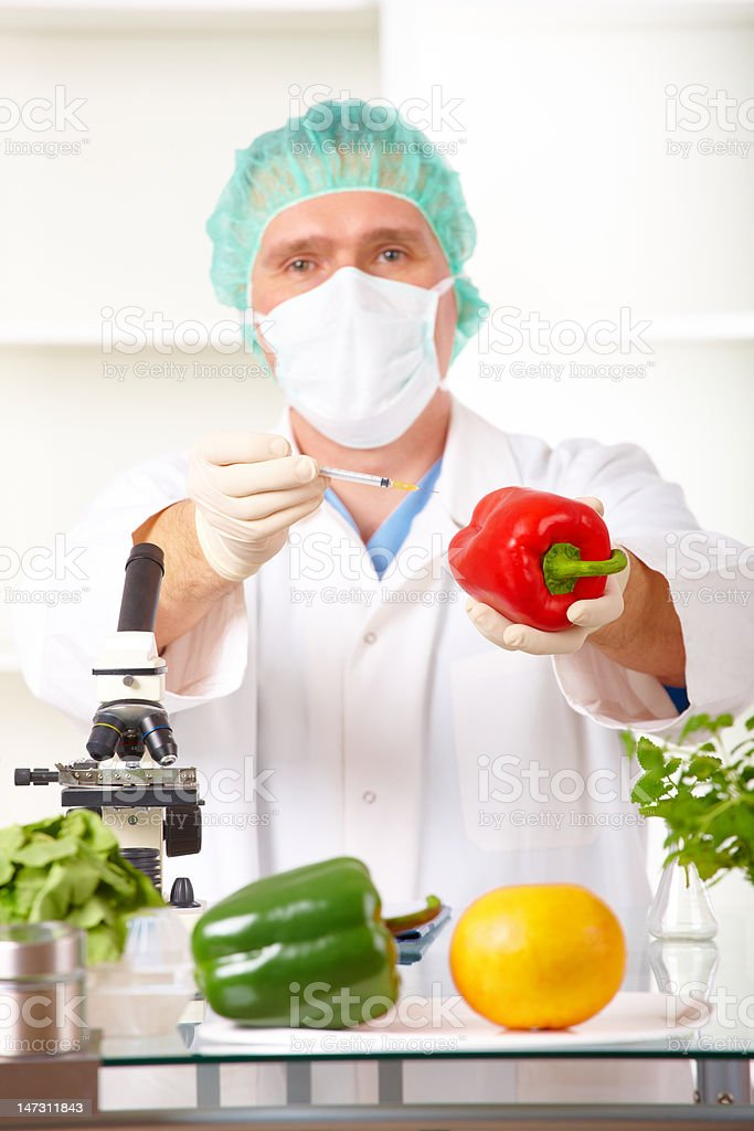 Researcher holding up a GMO vegetable in the laboratory royalty-free stock photo
