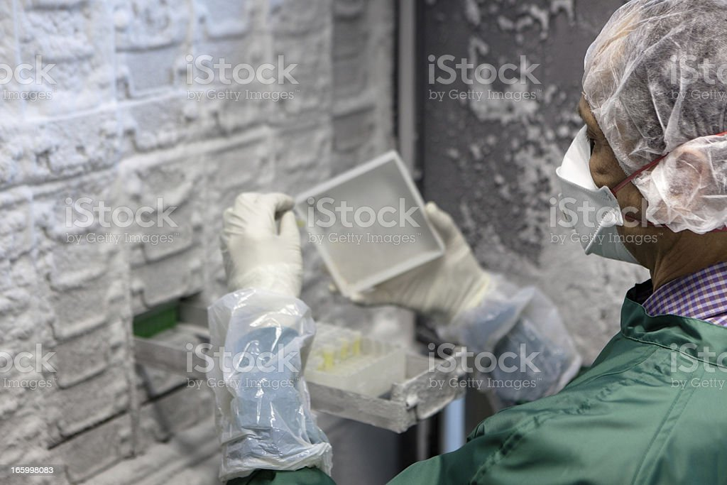 researcher looks for samples in a Thermo Scientific freezer stock photo