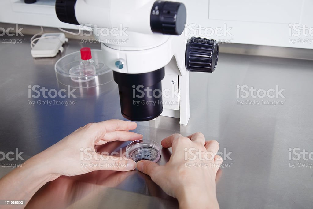 Researcher working on human cell royalty-free stock photo