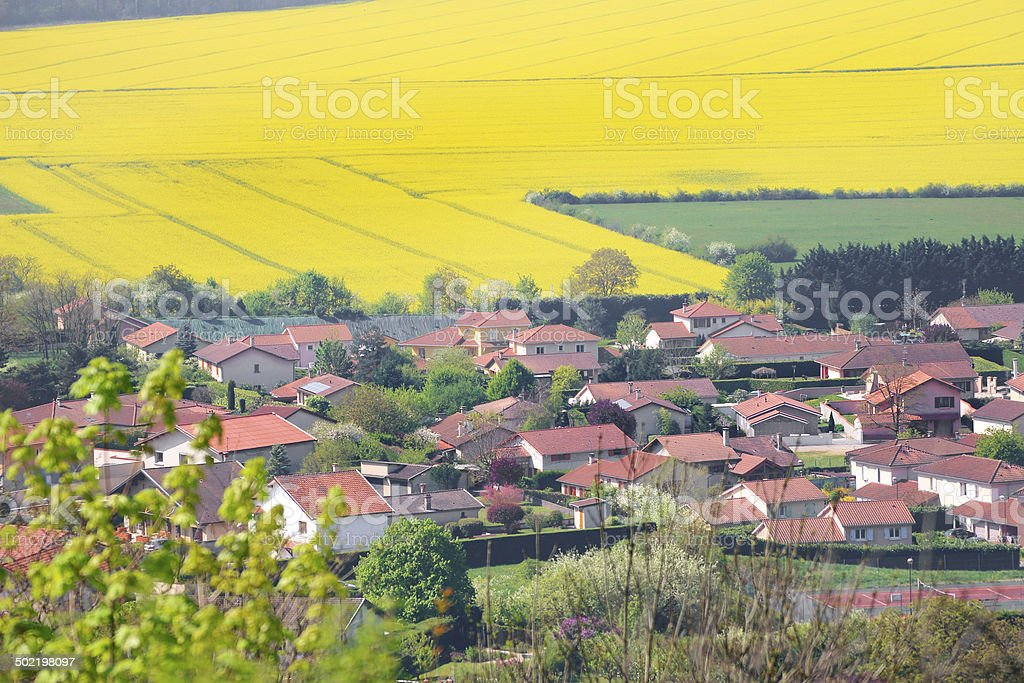 Residential district in field stock photo