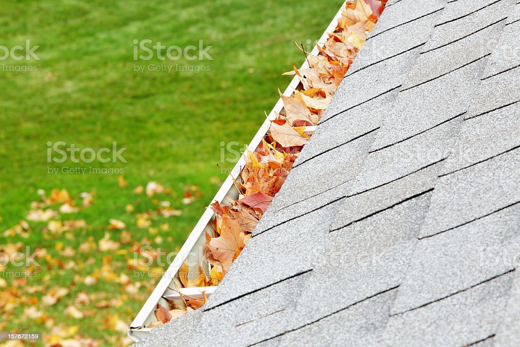 Residential Home Roof Gutter Filled With Autumn Leaves stock photo