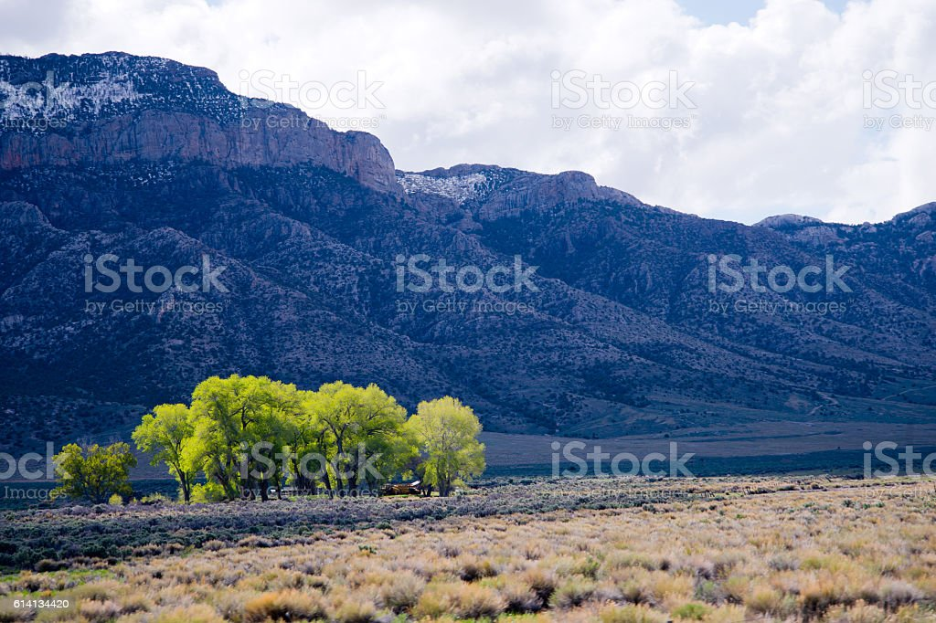 Residential island with trees in middle of rocky mountains stock photo