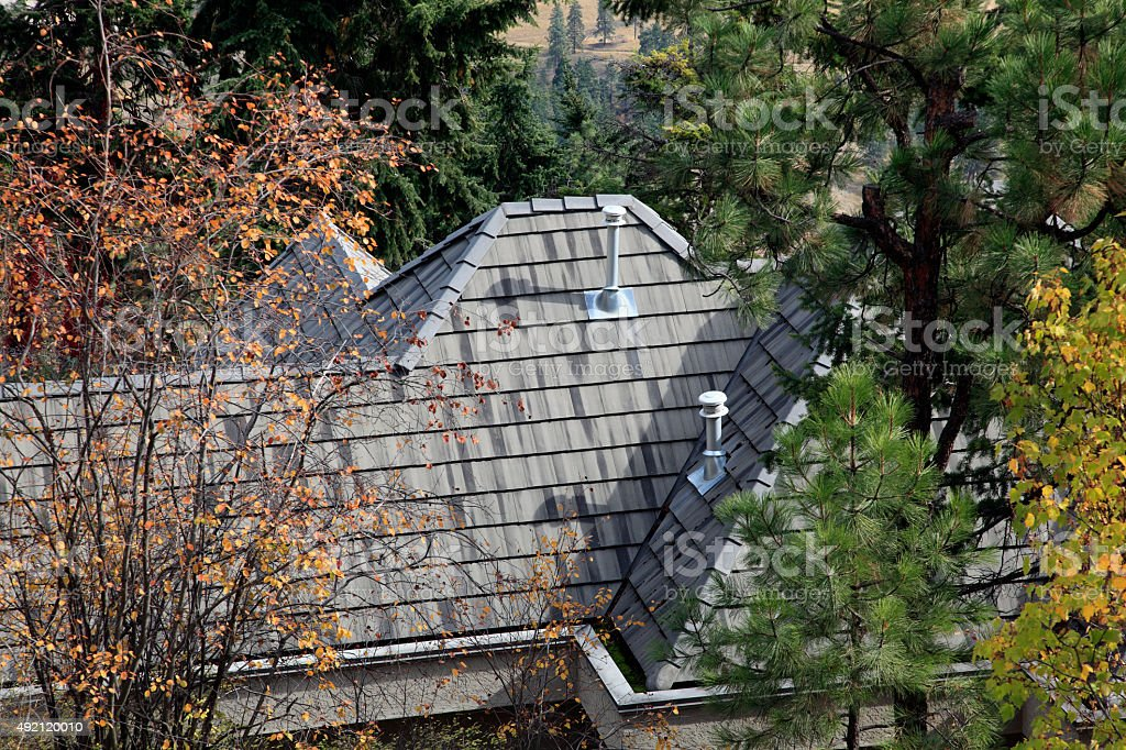 Residential Shingle Roof Surrounded By Fall Trees stock photo