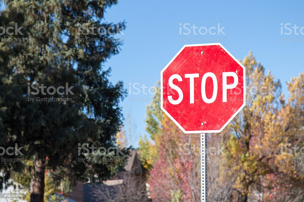 Residential stop sign in the autumn stock photo