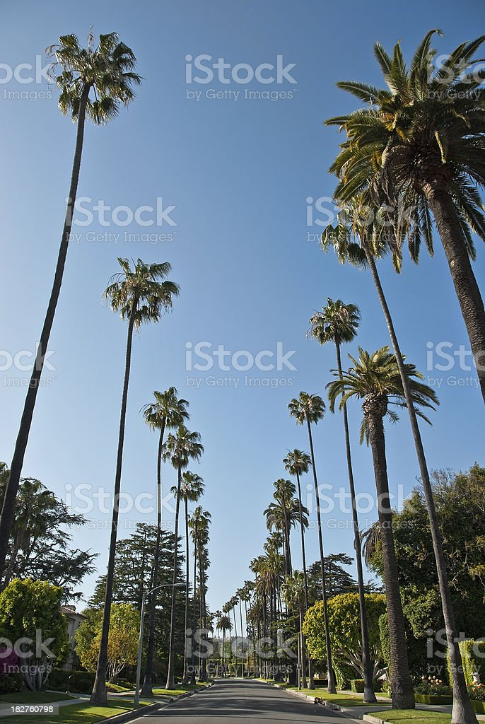 Residential Street in Beverly Hills, California stock photo