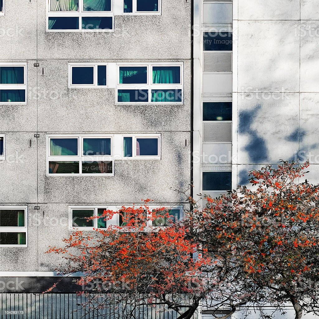 Residential structure with tree royalty-free stock photo