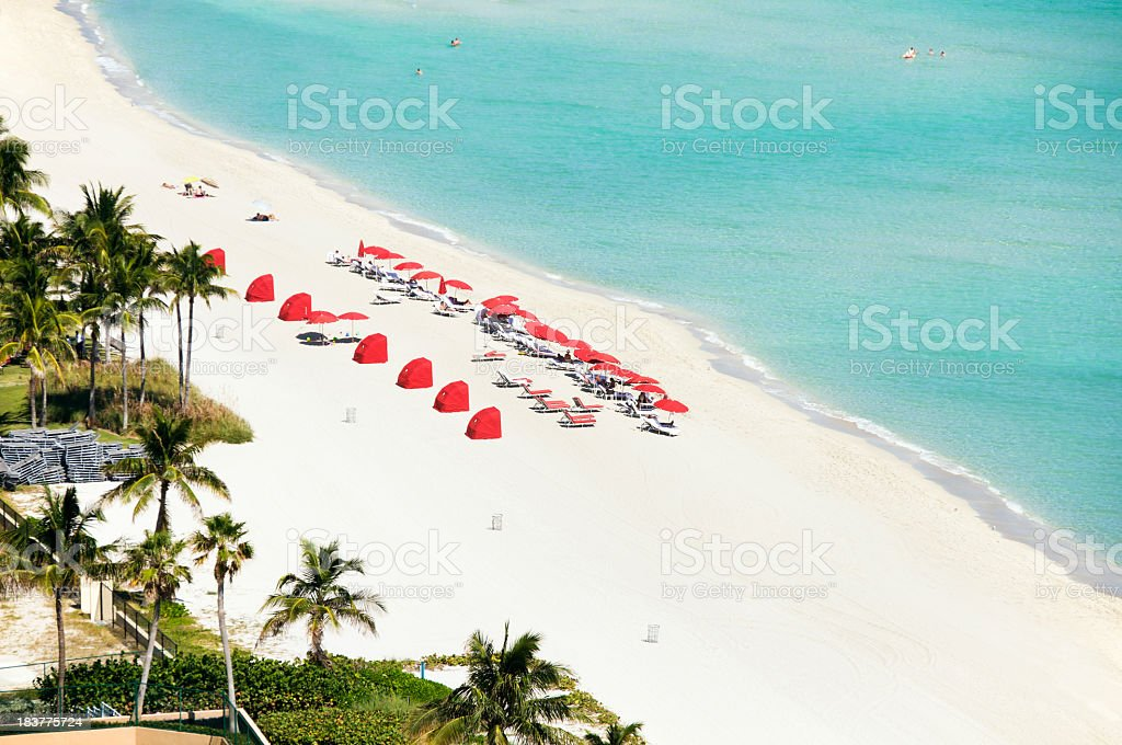 resort chairs and umbrellas on a beach in Miami, Florida royalty-free stock photo