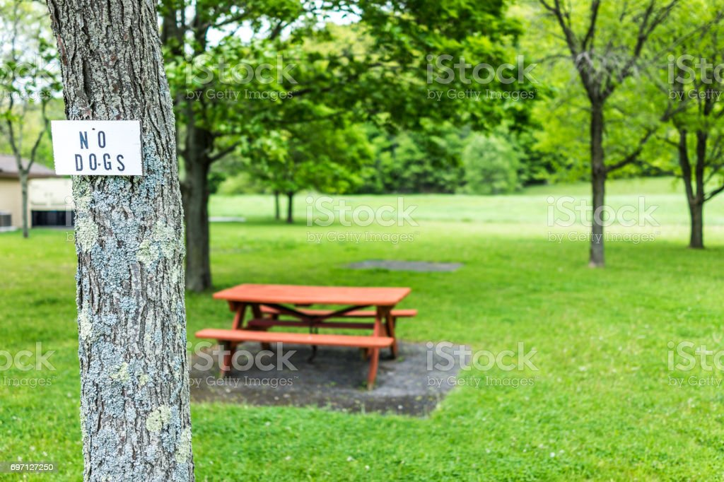 Rest area on road with picnic tables during summer with green grass and no dogs sign stock photo