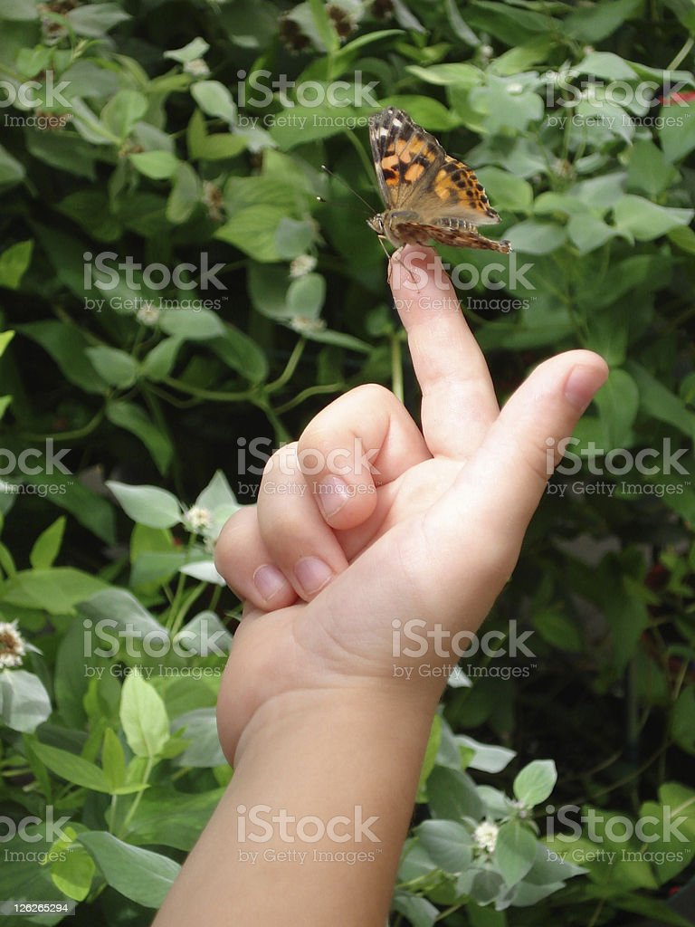 Resting butterfly sitting on fingertip of child royalty-free stock photo