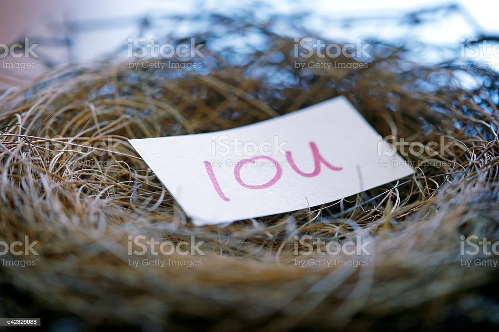 IOU Resting In A Bird's Nest stock photo
