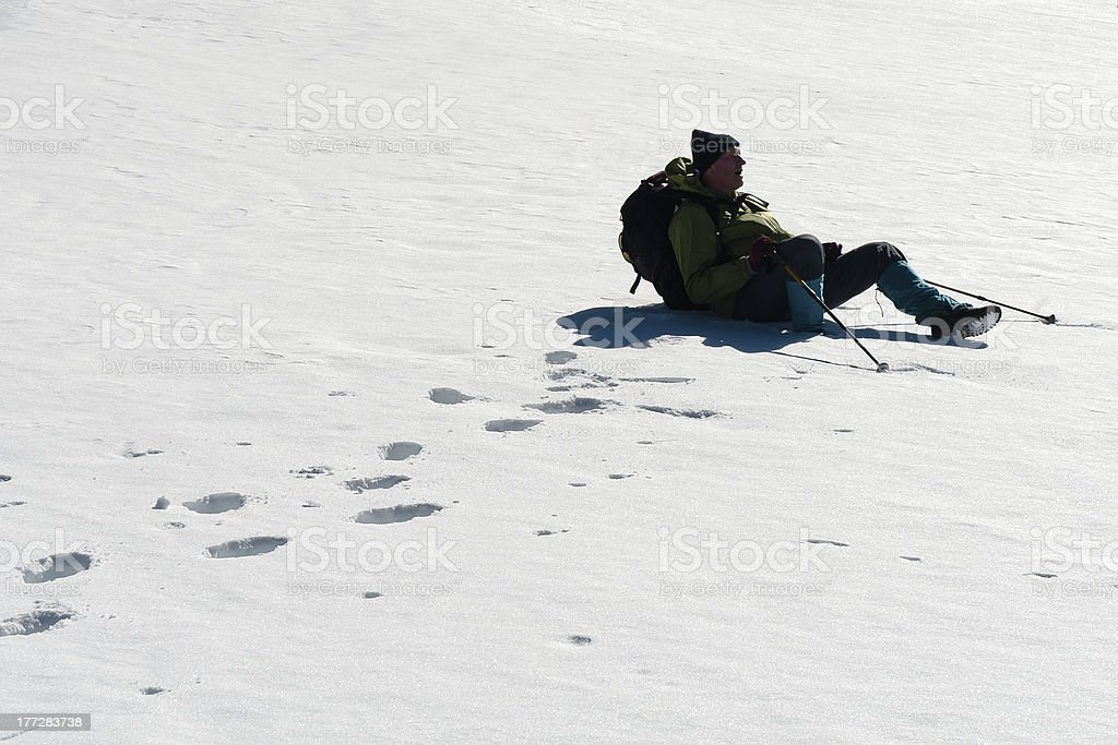 Resting in a deep snow royalty-free stock photo