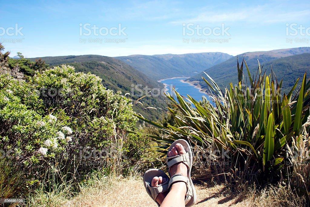 Resting in the Cobb Valley, Kahurangi National Park, New Zealand stock photo