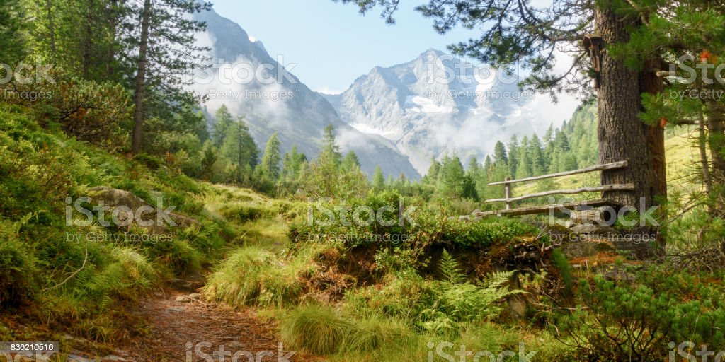 Resting place at the footpath in the alps as a panoramic image stock photo