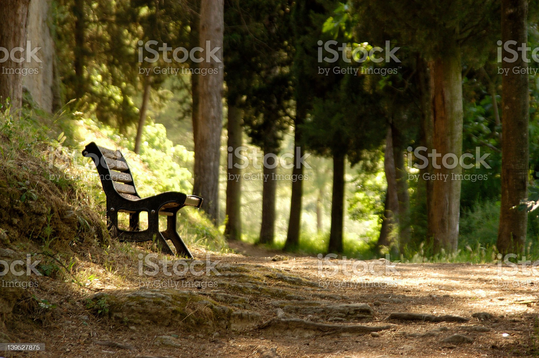 Resting spot in a woodsy hiking trail royalty-free stock photo