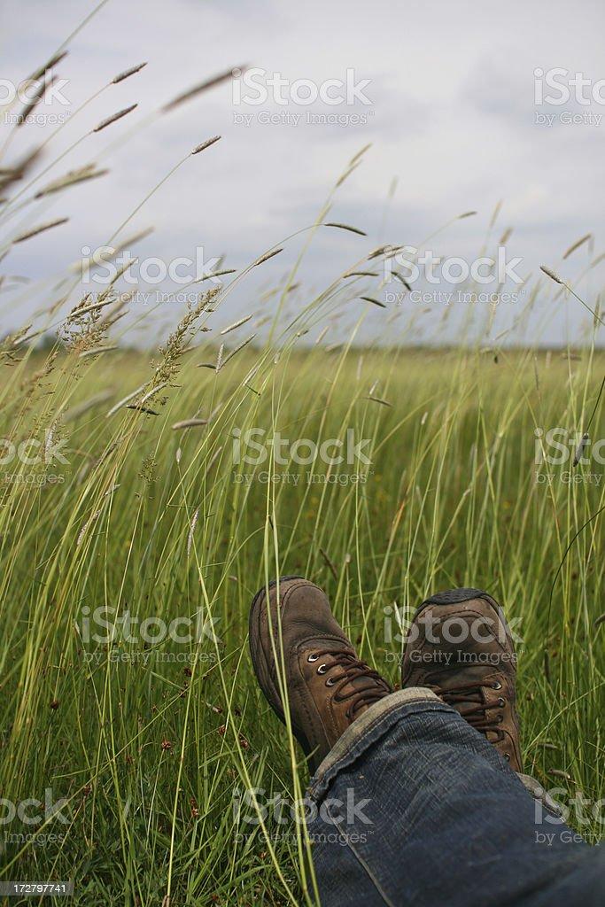 Resting Wanderer stock photo