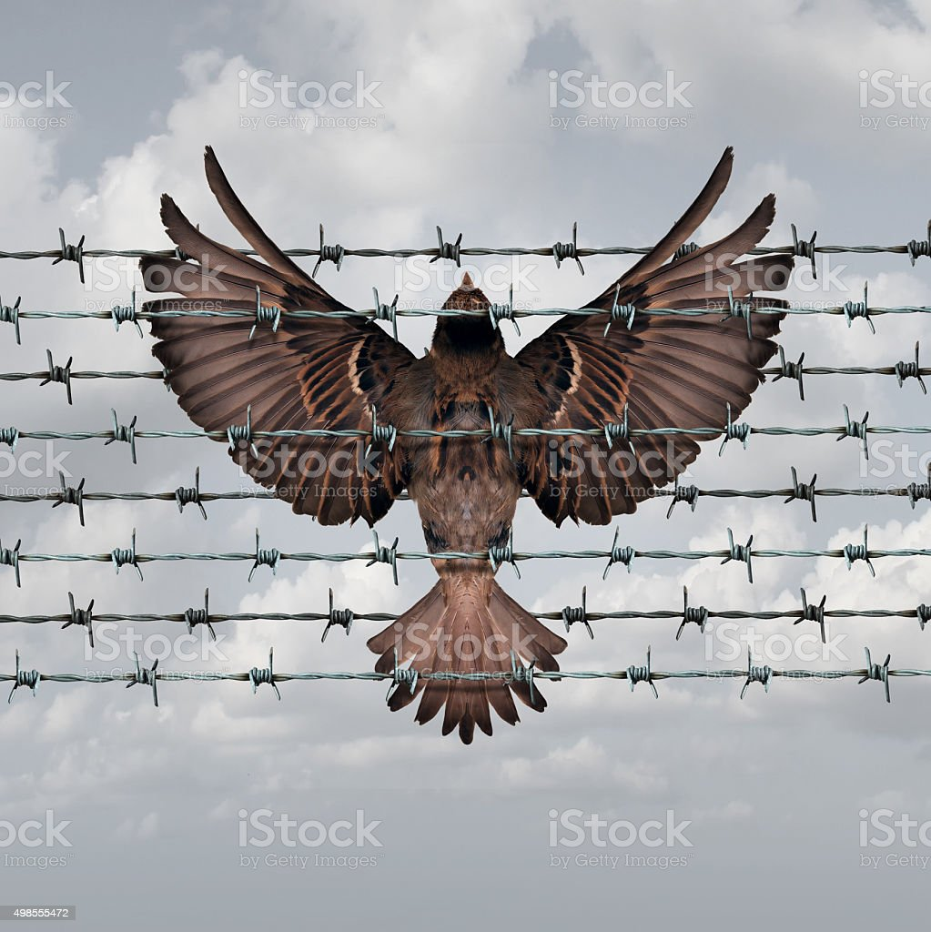 Restricted Freedom stock photo