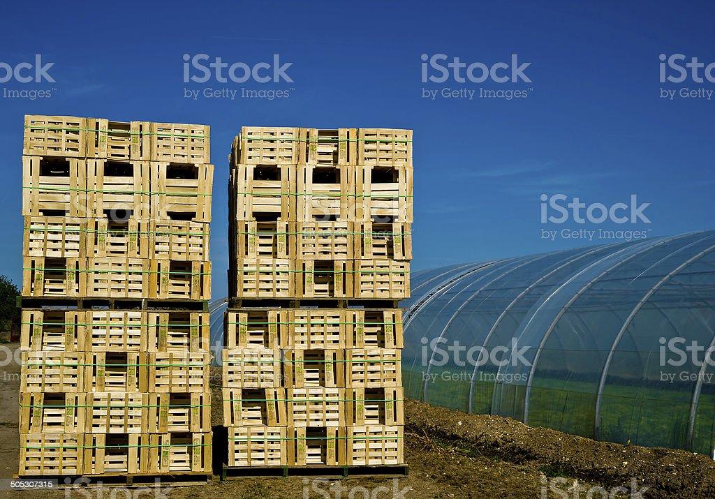 retail crates near greenhouse royalty-free stock photo