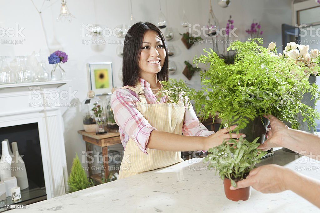 Retail Florist Store Owner Serving Customer Hz royalty-free stock photo