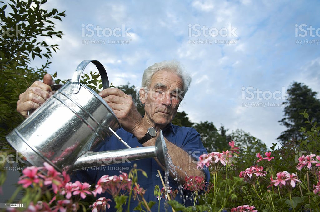 Retired senior watering the flowers royalty-free stock photo