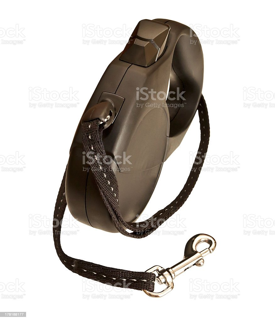 Retractable leash for dog isolated on white background stock photo