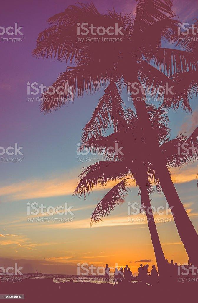 Retro Beach Party Under Palm Trees stock photo