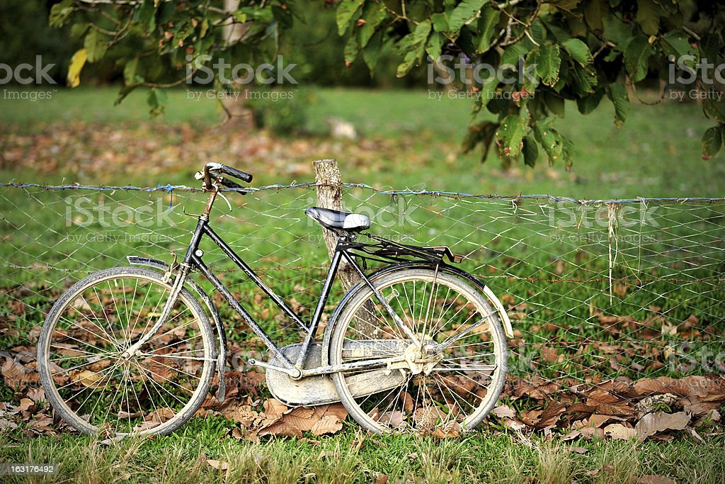 Retro Bicycle royalty-free stock photo