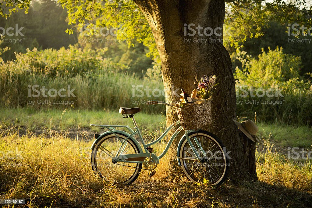 Retro Bicycle with Red Wine in Picnic Basket XXXL stock photo