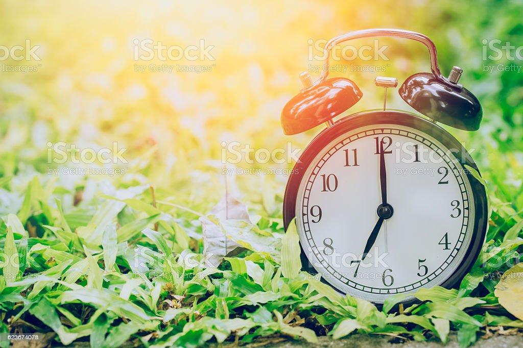 retro clock in the garden grass stock photo