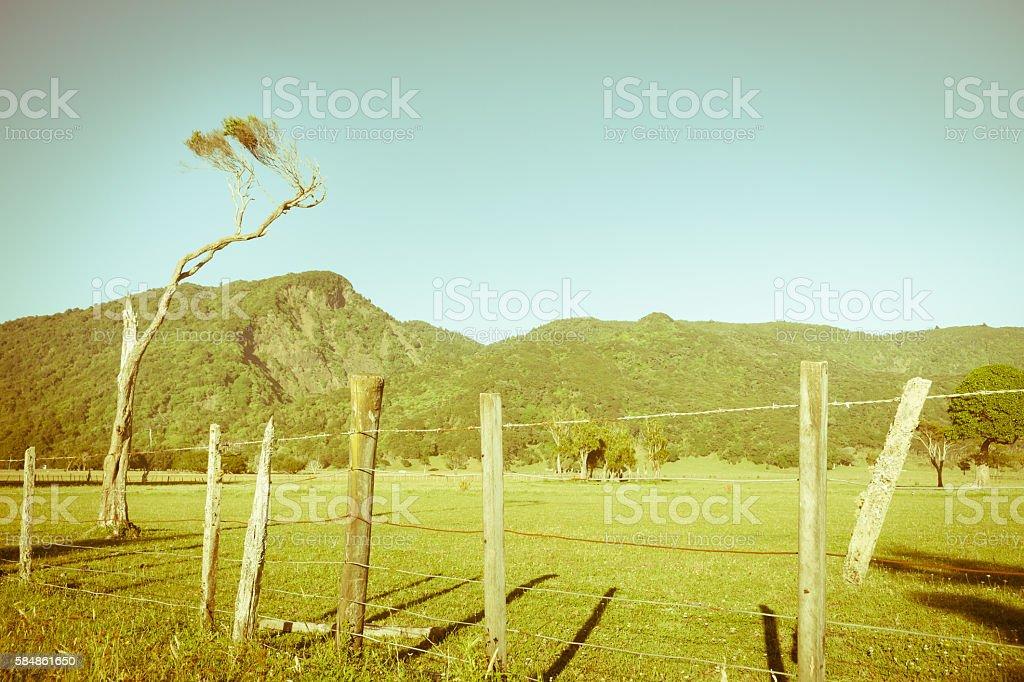 Retro effect New Zealand rual landscape stock photo