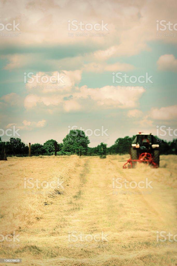 Retro Hay Harvest stock photo
