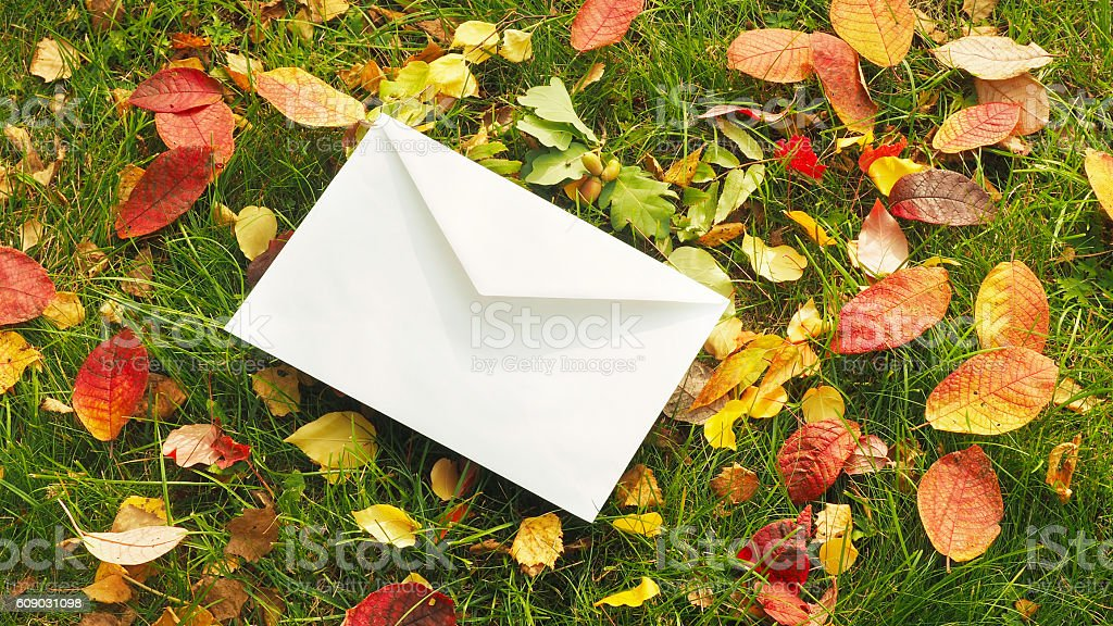 Retro letter on the grass with leaves. Autumn concept stock photo