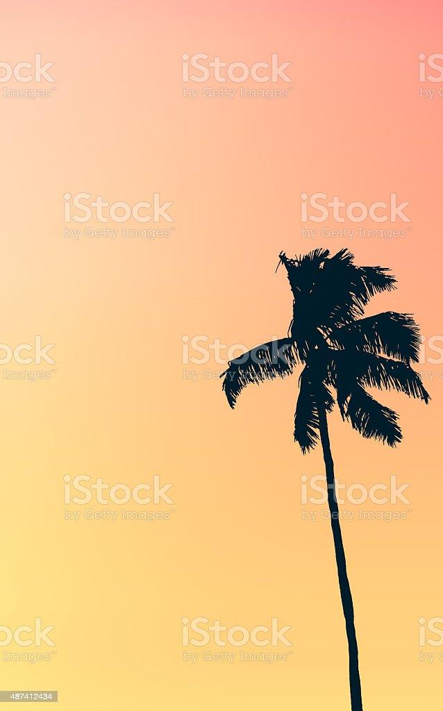 Retro Pastel Colored Single Palm Tree stock photo