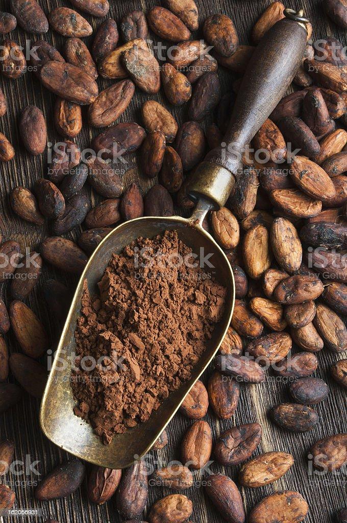 retro scoop with cocoa powder stock photo