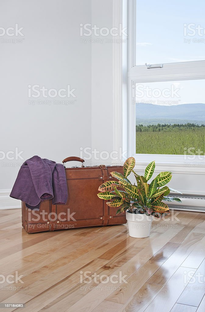 Retro suitcase and bright plant in empty room royalty-free stock photo
