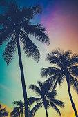 Retro Sunset Palm Trees