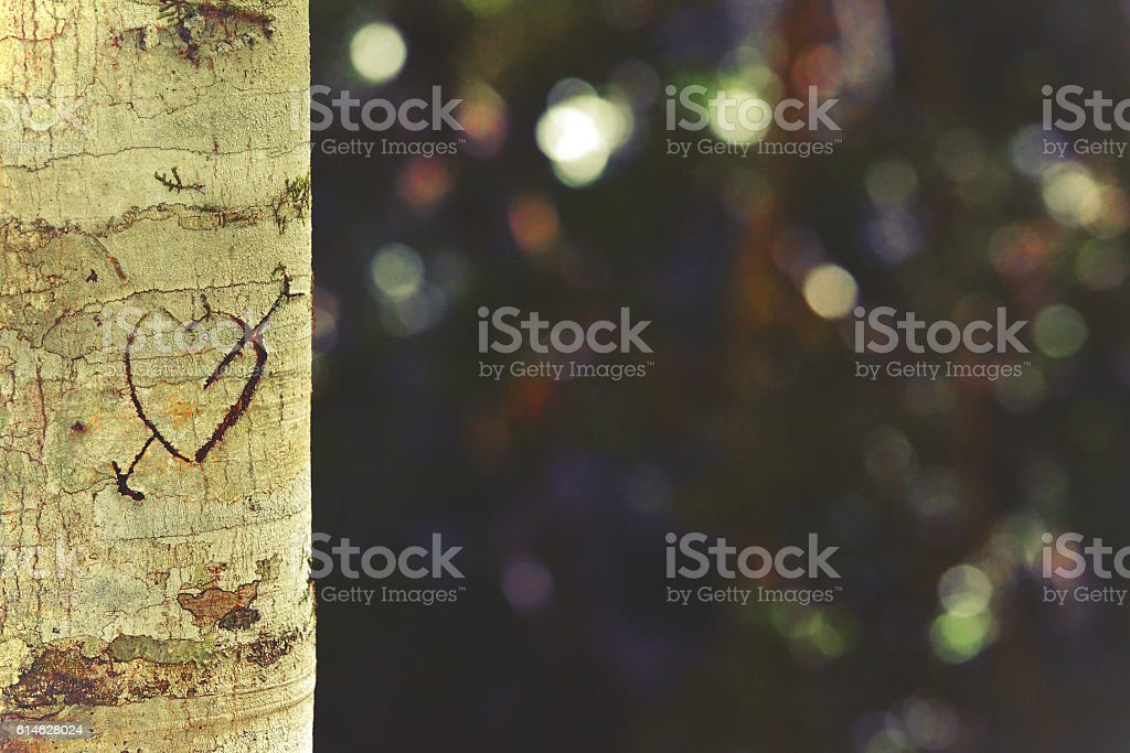 Retro toned heart and arrow carved in tree trunk stock photo