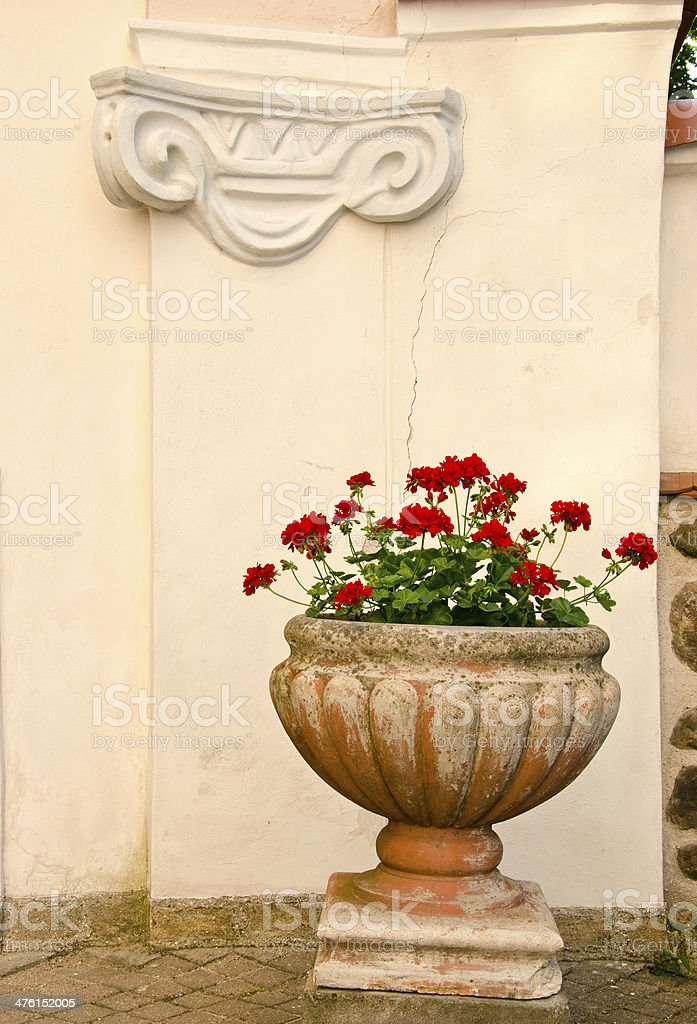 retro vase with flowers and old wall stock photo