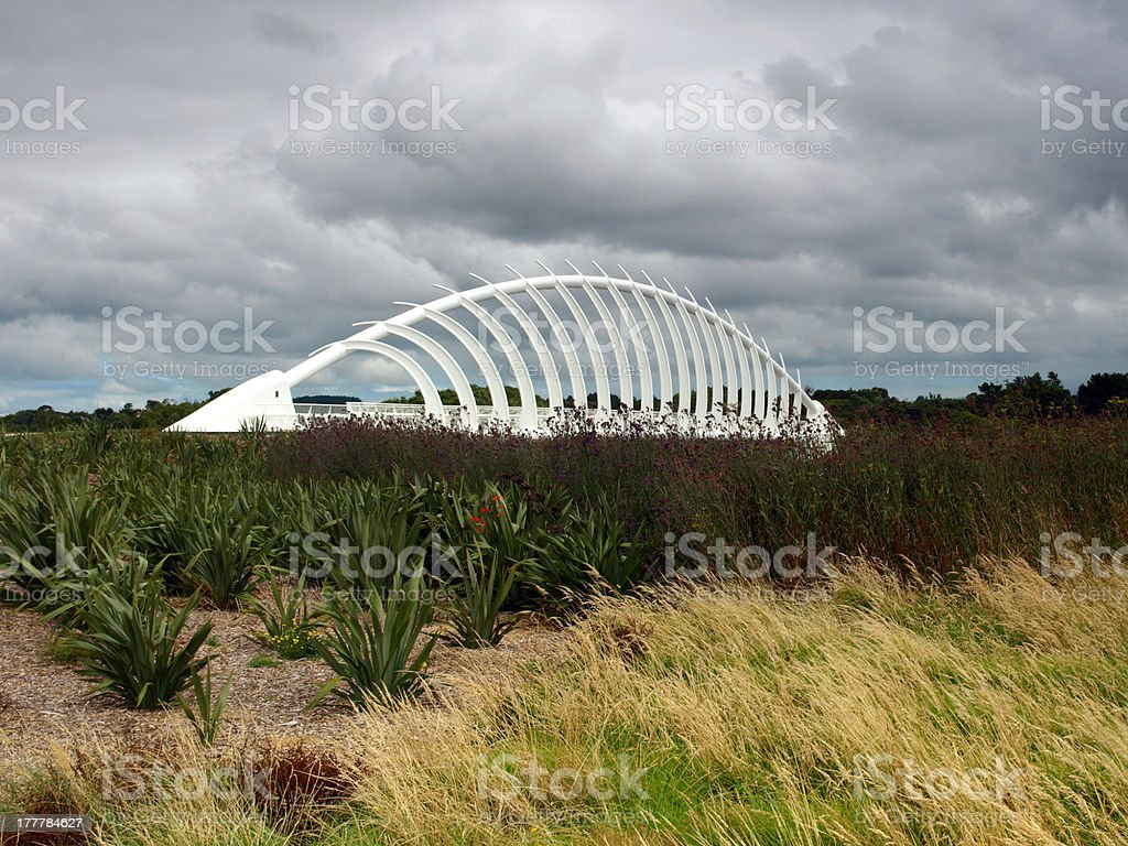 Rewa bridge on the north island of New Zealand stock photo