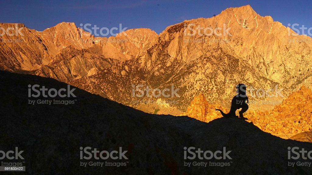 T Rex at sunrise with mountains stock photo