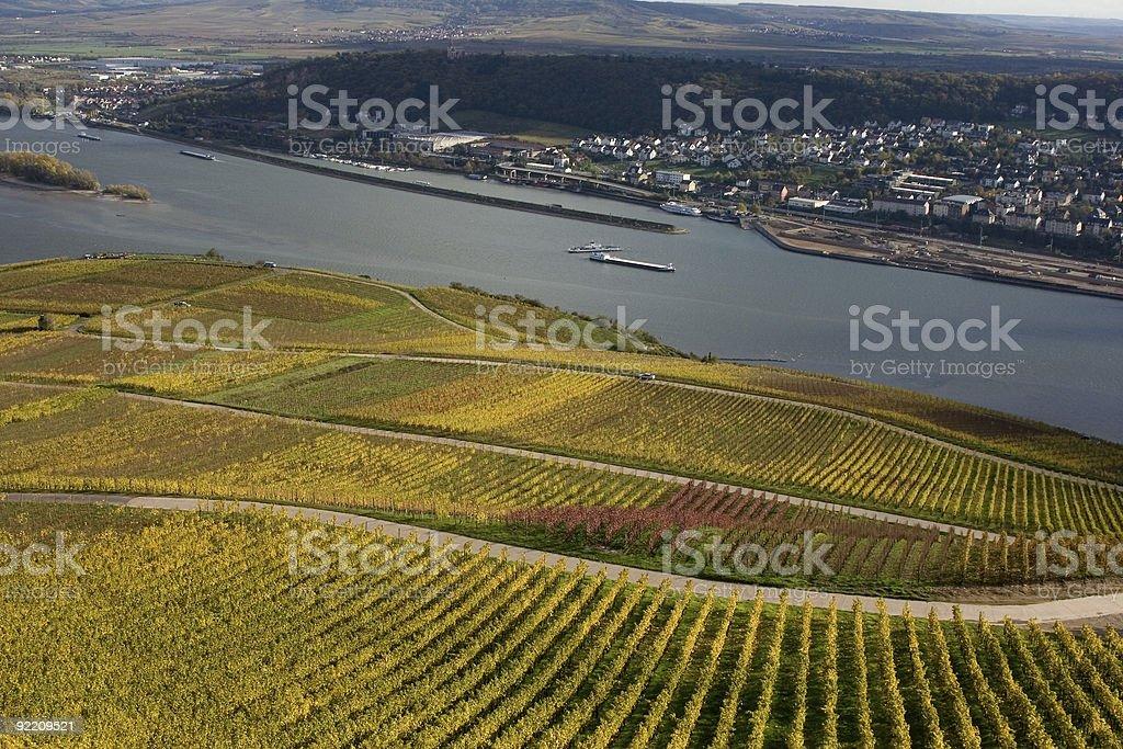 Rheingau, Germany royalty-free stock photo