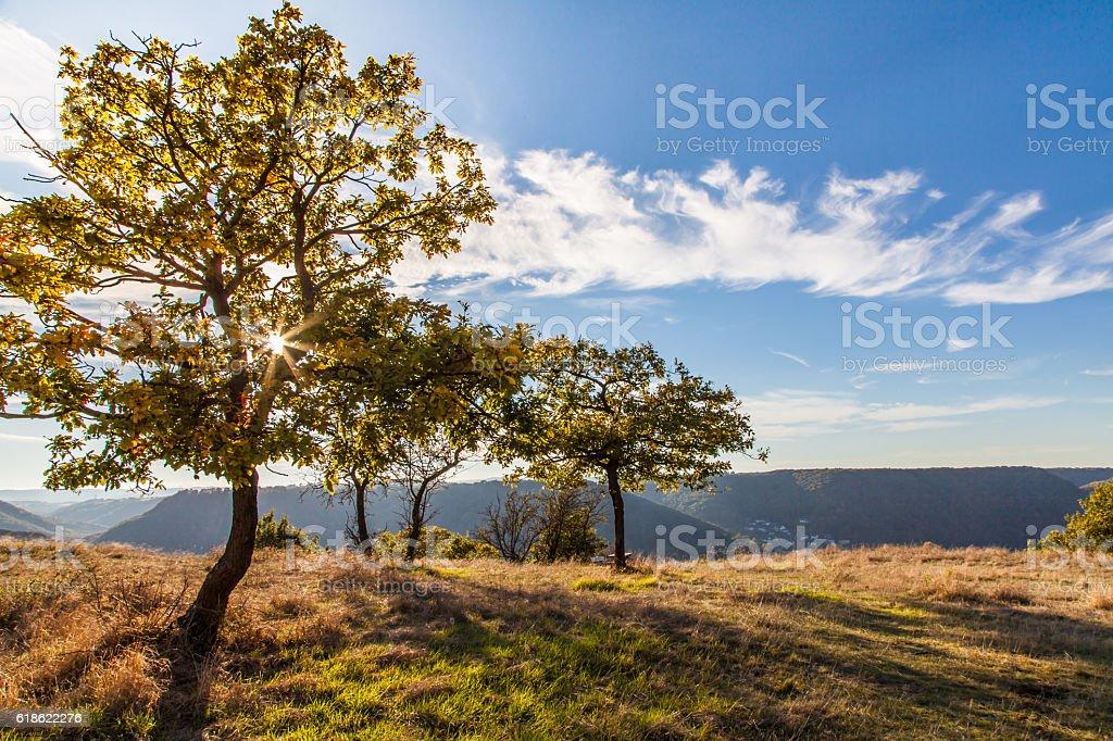 Rheinsteig Landschaft im Herbst stock photo