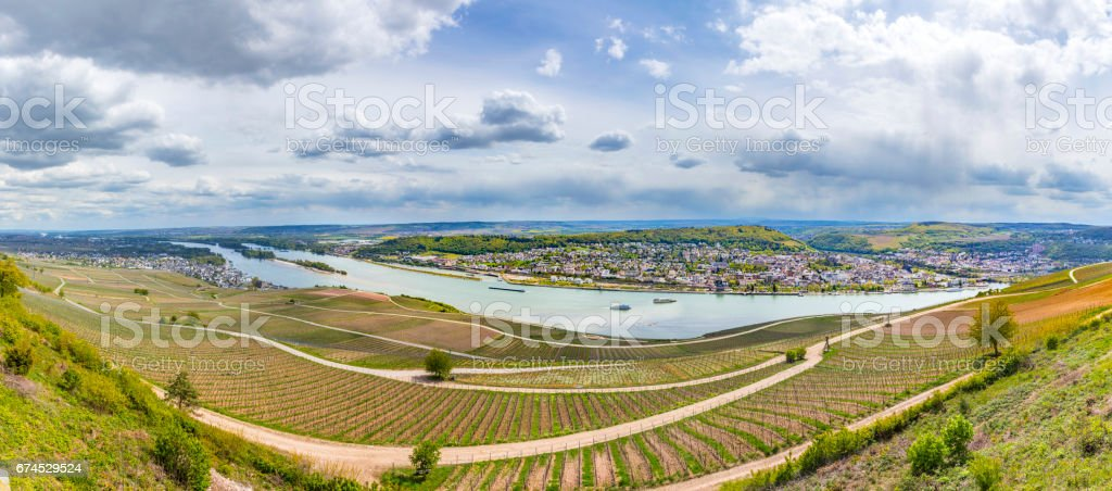 rhine valley with view to Bingen over vineyards stock photo