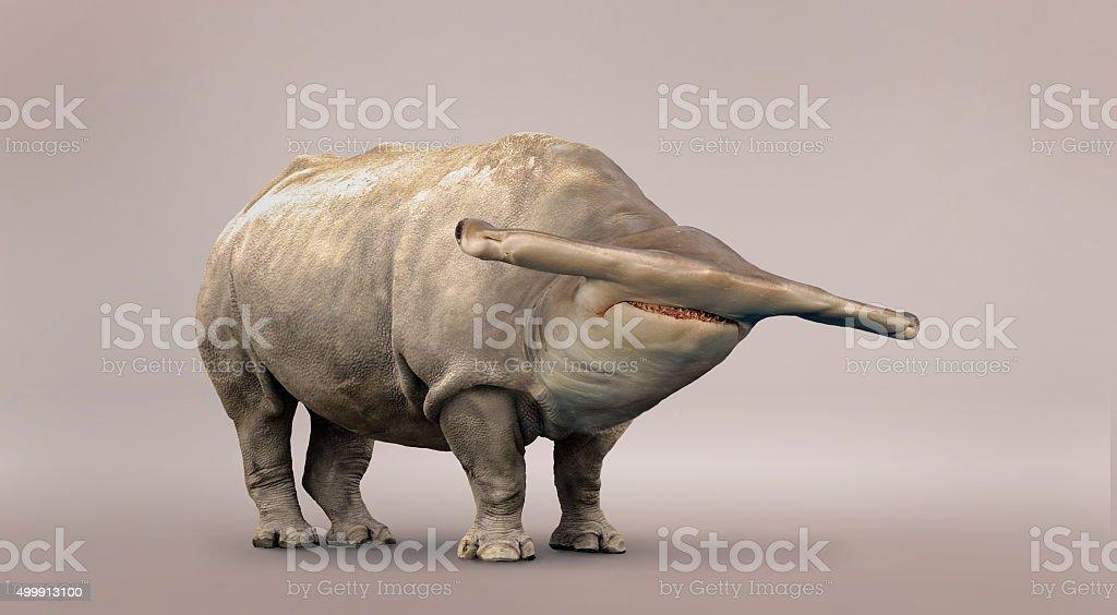 Rhino and shark mutation. stock photo