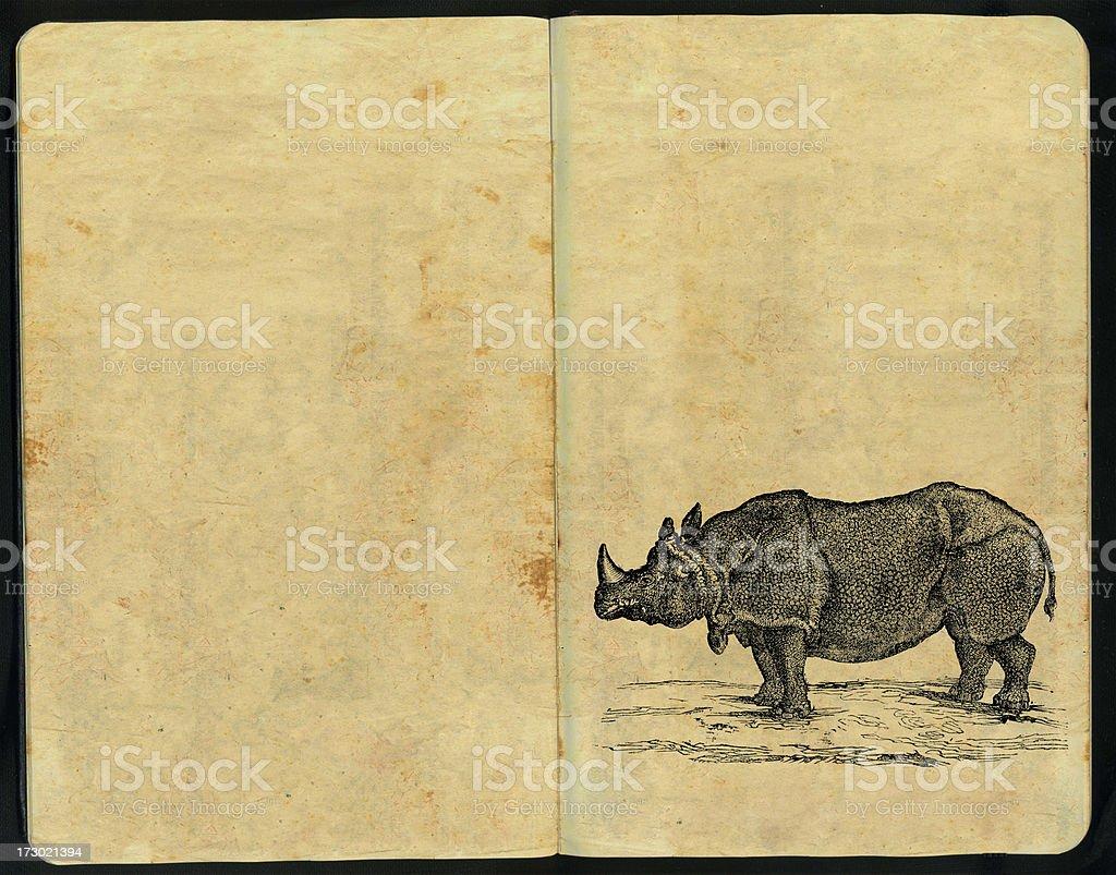 Rhino Sketch Pad royalty-free stock photo