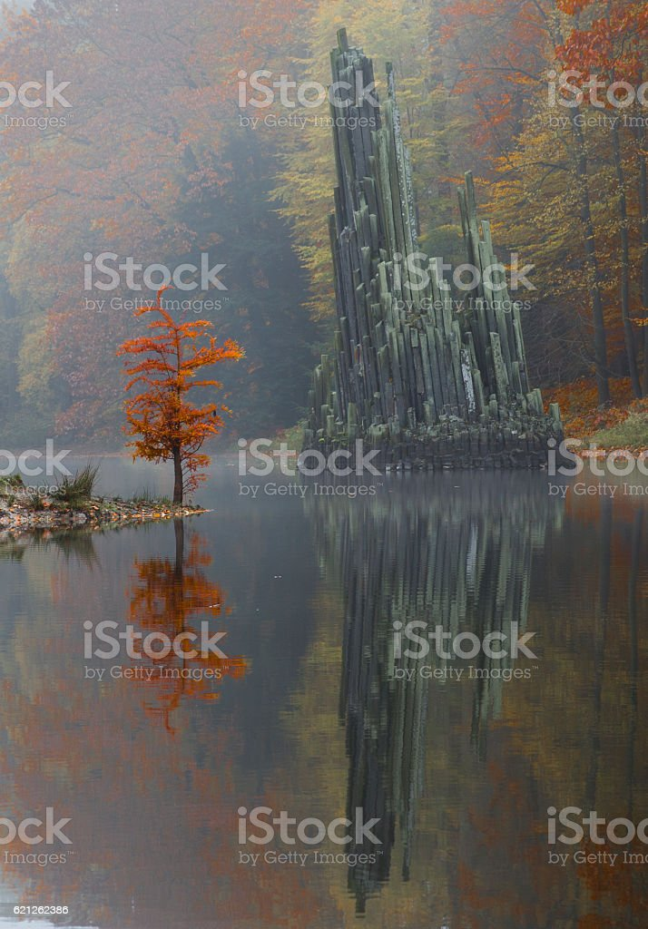 Rhododendron Park Kromlau, Germany stock photo