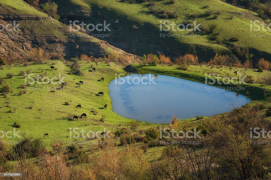 Rhodope Mountains in the morning, Bulgaria stock photo