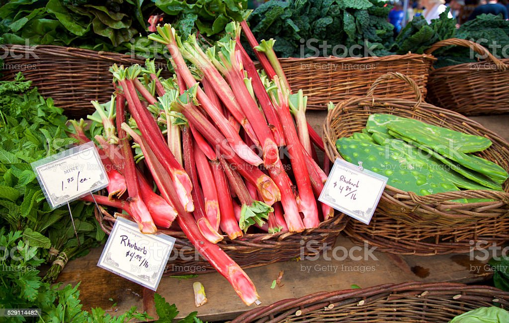 rhubarb and nopales stock photo