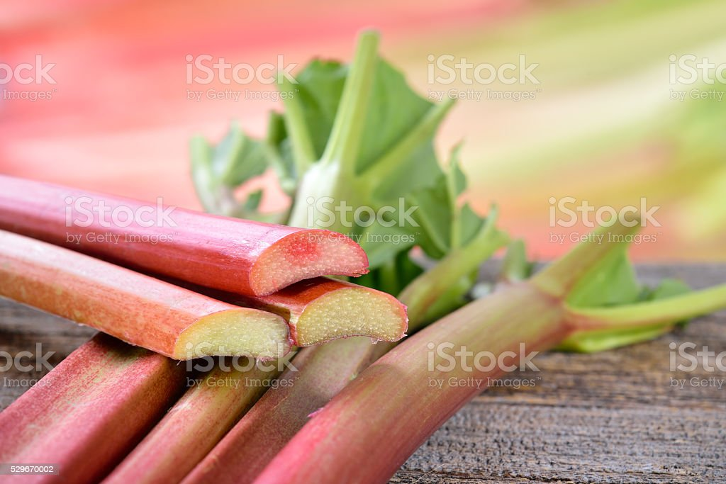 Rhubarb stalks stock photo