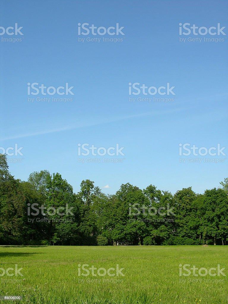 Riant landscape royalty-free stock photo